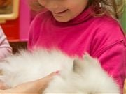 Warsztaty przyrodnicze - królik i jego zwyczaje. 5 IV 2017 r. Fot. Anita Kot