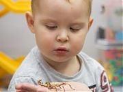 Od robaczka do ssaczka - warsztaty przyrodnicze. Fot. Anita Kot
