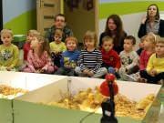 26 III 2014 r. - Zajęcia warsztatowye - Wielkanocne cudne pisklaki-kaczuszki i kurczaki - fotorelacja , img_1319