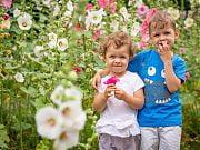Lato w 4 Słoniach - sesja portretowa przedszkolaków. Czerwiec 2019 r. Fot. Anita Kot