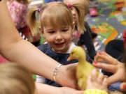 26 III 2014 r. - Zajęcia warsztatowye - Wielkanocne cudne pisklaki-kaczuszki i kurczaki - fotorelacja , img_1724